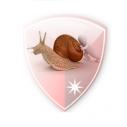 Download SlowDNS Apk Untuk Trik Internet Gratis