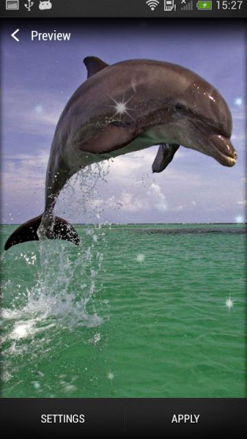 壁纸 动物 海洋动物 桌面 360_640 竖版 竖屏 手机