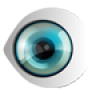 Big Brother Icon
