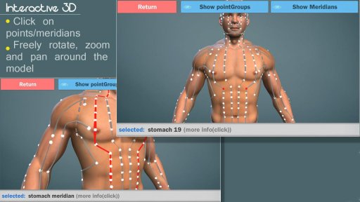 3D Acupuncture&meridians;(Full) screenshot 1